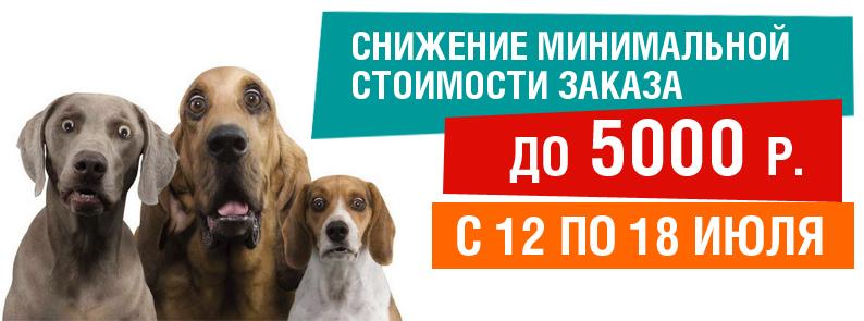Минимальный заказ от 5000 рублей!