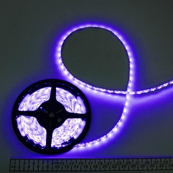 Лента светодиодная 5м*10мм, 60 ламп LED на 1м, синяя,самоклейка,12В, степень защиты IP65 купить оптом и в розницу