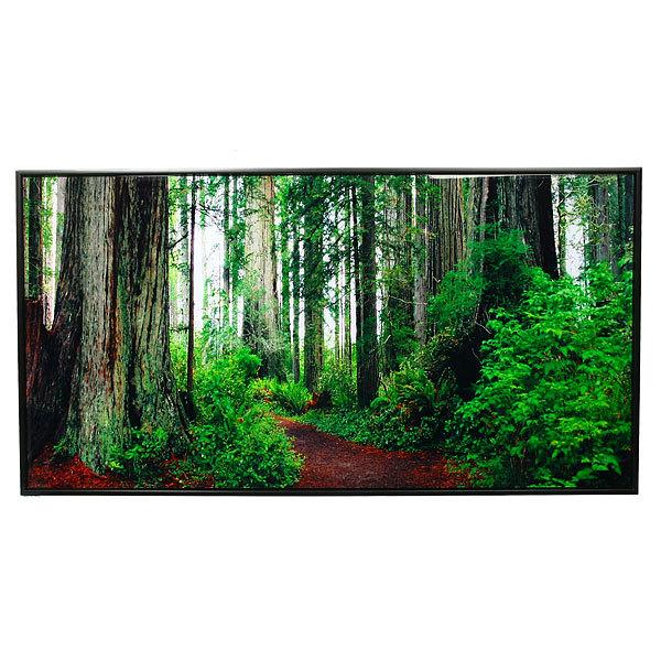 Картина стекло 46*86см ″Природа″ HG-37 купить оптом и в розницу