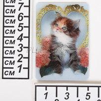 Магнит голограмма ″Кот в сердце″ 50х75мм LD-017 купить оптом и в розницу
