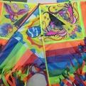 Воздушный змей Микс радужный 85х40см 141-782G купить оптом и в розницу