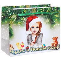 Пакет подарочный 11х14 см горизонтальный ″Чудес в Новом году!″, Снегурочка купить оптом и в розницу