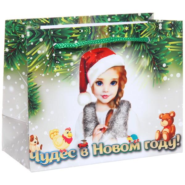 Пакет 11х14 см глянцевый ″Чудес в Новом году!″, Снегурочка, горизонтальный купить оптом и в розницу