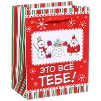Пакет подарочный 11х14 см вертикальный ″Это все тебе!″, Снежон и Борода купить оптом и в розницу