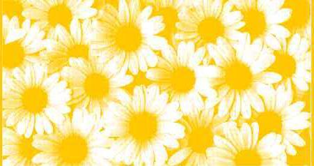 ПЦ-3502-1875 полотенце 70x130 махр г/к Camomilla цв.10000 купить оптом и в розницу