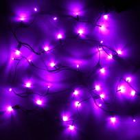 Гирлянда светодиодная 5,2м, 50 ламп LED, Фиолетовый, 8 реж, зелен.пров. купить оптом и в розницу