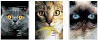 """Блокнот А7 40л.кл.гребень,картон.обл.АЛЬТ, """"Кошачий взгляд"""" купить оптом и в розницу"""