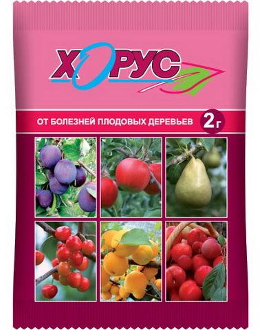 Препарат Хорус для плодовых деревьев (пакет 3г) ВАШЕ ХОЗЯЙСТВО купить оптом и в розницу