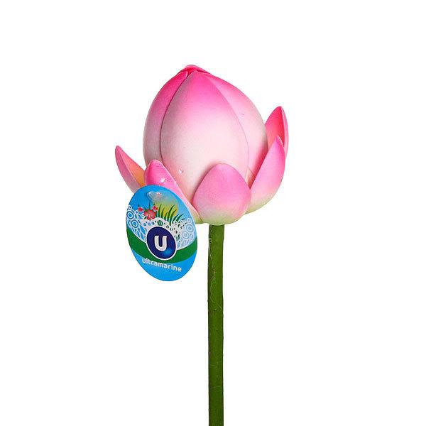 Растение водоплавающее ″Лотос закрытый микс″ 90см купить оптом и в розницу