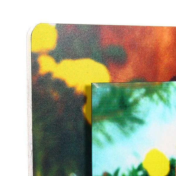 Картина стекло 52*40см ″Таксы″ купить оптом и в розницу