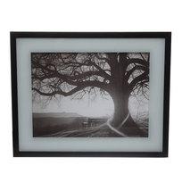 Картина стекло 40*50см ″Дерево″ МС2104 купить оптом и в розницу