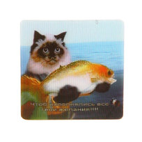 Магнит голограмма ″Кот с рыбой″ 60х60мм купить оптом и в розницу