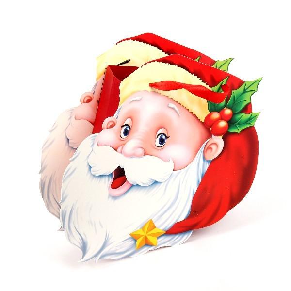 Пакет подарочный 17х15х8 см ″Дед мороз″ купить оптом и в розницу