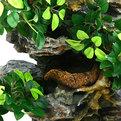 Фонтан из полистоуна ″Деревья на скалах″ 32*14*38см настенный 205-S купить оптом и в розницу