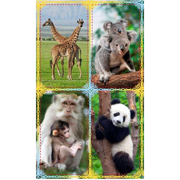 Наклейки Африканские фивотные 3014 /Квадра/ купить оптом и в розницу