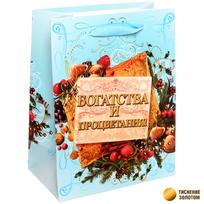 Пакет подарочный 14х18 см вертикальный ″Богатства и процветания″, Ореховый праздник купить оптом и в розницу