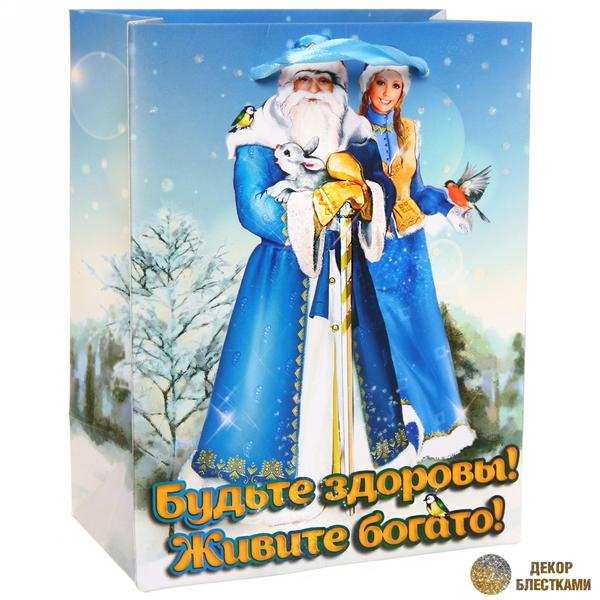 Пакет 14х18 см усиленный с блестками ″Будьте здоровы! Живите богато!″, Дед Мороз и Снегурочка, вертикальный купить оптом и в розницу