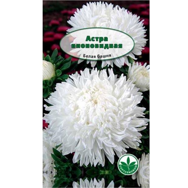 Семена Астра пионовидная Белая башня 0,3 г купить оптом и в розницу