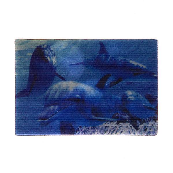 Магнит голограмма ″Дельфины″ 70х75мм купить оптом и в розницу