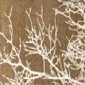 ПЦ-634-1249 полотенце 50x100 махр п/т RAMETTO цв.10000 купить оптом и в розницу