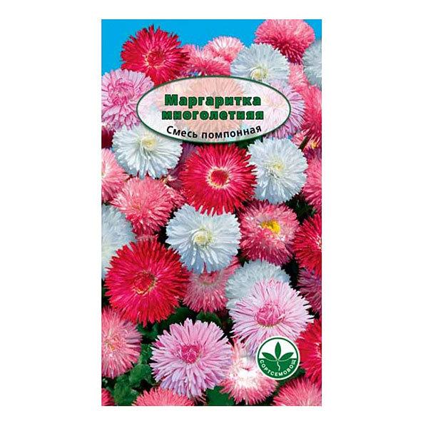 Семена Маргаритка смесь Помпонная 10шт купить оптом и в розницу