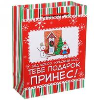 Пакет подарочный 18х23 см вертикальный ″Дед Мороз подарок принес!″, Снежон и Борода купить оптом и в розницу