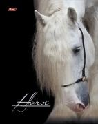 """Тетрадь 80л.кл.гребень HATBER, """"Horse"""", тв.обложка, 2-цв.блок купить оптом и в розницу"""