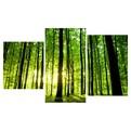 Картина модульная триптих 55*96 Природа диз.8 11-01 купить оптом и в розницу