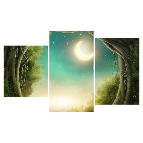 Картина модульная триптих 55*96 Природа диз.9 12-01 купить оптом и в розницу