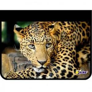 Папка д/тетр. 1отдел.на молнии А4 Леопард купить оптом и в розницу