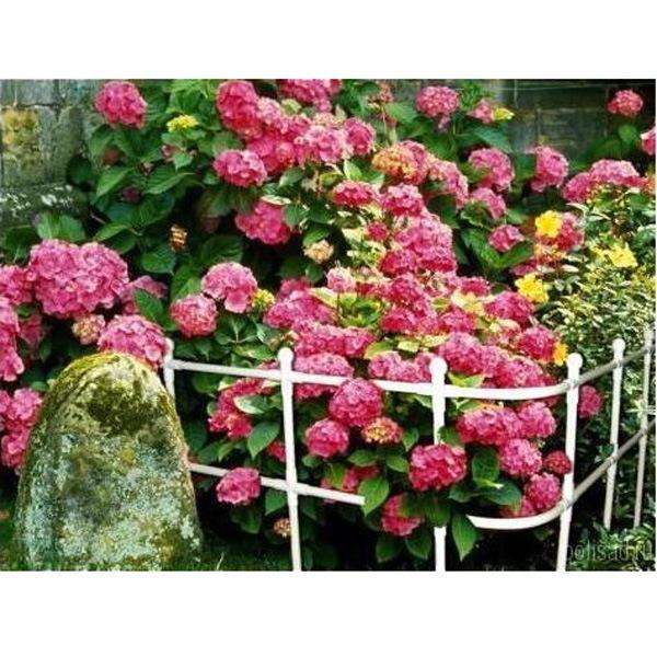 Забор сборный (110*300 см.) 1/1 купить оптом и в розницу