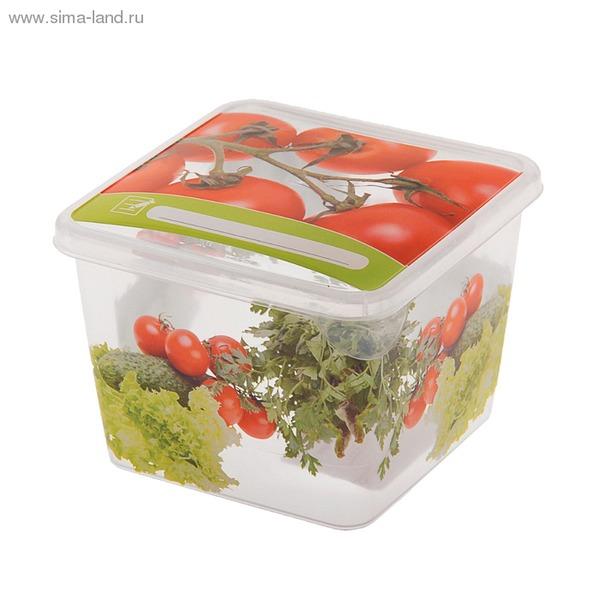 """Емкость для продуктов """"Браво"""" Овощи квадратная 0,45 л*60 купить оптом и в розницу"""