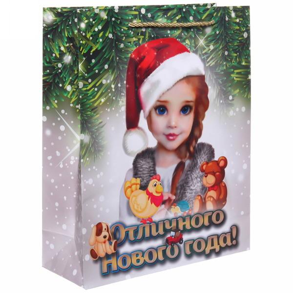 Пакет 26х32 см глянцевый ″Отличного Нового года!″, Снегурочка, вертикальный купить оптом и в розницу