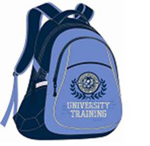 Рюкзак школьный Феникс Эмблема на голубом, 43*30*19см, с светоотр.элемент.,отверст.для провода, карманы купить оптом и в розницу