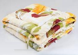 Одеяло 172х205 силикон/полиэстр Василиса О/33 ЭКО купить оптом и в розницу