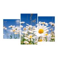 Картина модульная триптих 55*96 119-01 купить оптом и в розницу