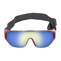 Очки горнолыжные 147 купить оптом и в розницу