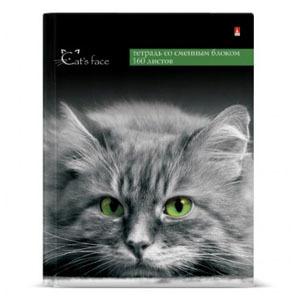 """Тетрадь 160л.кл.на кольц.АЛЬТ, """"Кошки.Яркий взгляд"""", с 1-м сменным блоком купить оптом и в розницу"""