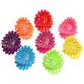 Заколка-краб для волос в пакете 100шт ″Глянцевые ромашки″, цвет микс, l-2см купить оптом и в розницу