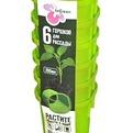 Набор горшков для выращивания рассады 6/200 мл .*24 купить оптом и в розницу