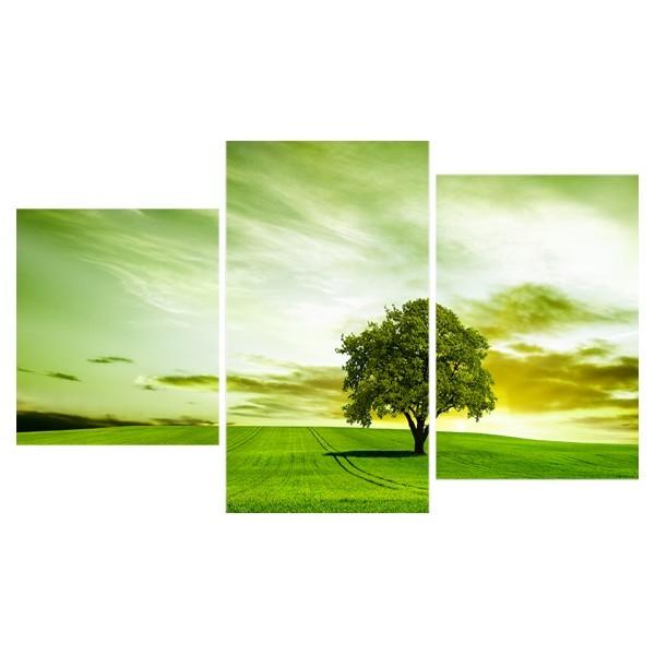 Картина модульная триптих 55*96 Природа диз.16 42-01 купить оптом и в розницу