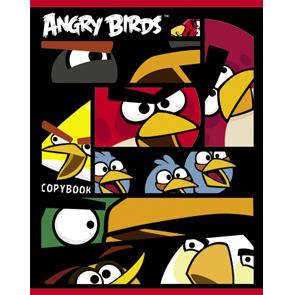 """Тетрадь 48л.кл.гребень HATBER, """"Angry Birds"""" купить оптом и в розницу"""