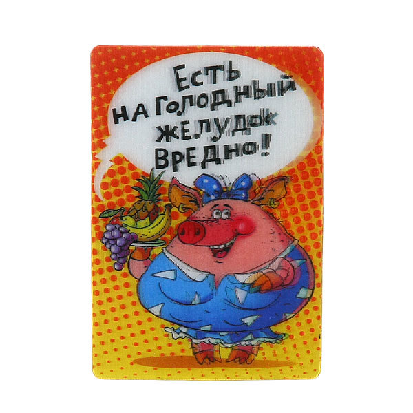 Магнит из пластика ″Приколы″ 70х95мм LD-041 купить оптом и в розницу