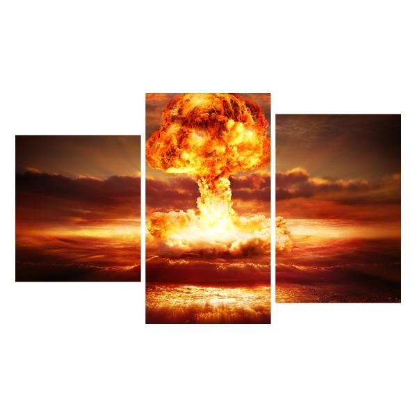 Картина модульная триптих 55*96 Взрыв диз.1 47-01 купить оптом и в розницу