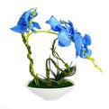 Цветы искусственные в тарелке ″Орхидея″ в подарочной коробке HDL купить оптом и в розницу
