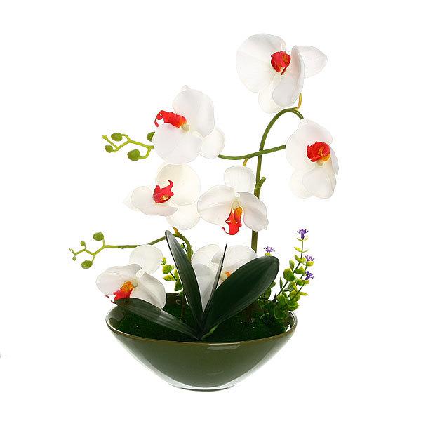 Цветы искусственные в тарелке ″Орхидея″ в подарочной коробке B-001 купить оптом и в розницу