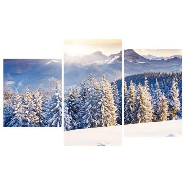 Картина модульная триптих 55*96 Природа диз.19 51-01 купить оптом и в розницу