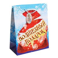 Пакет подарочный 26х21х10 см ″Волшебный подарок″ купить оптом и в розницу
