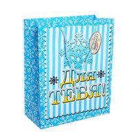 Пакет подарочный 21х18х8,5 см ″Для тебя″ купить оптом и в розницу