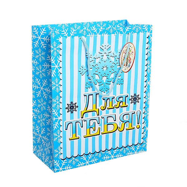 Пакет подарочный 26х21х10 см ″Для тебя″ купить оптом и в розницу